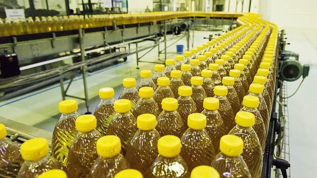 Производство растительных масел как бизнес