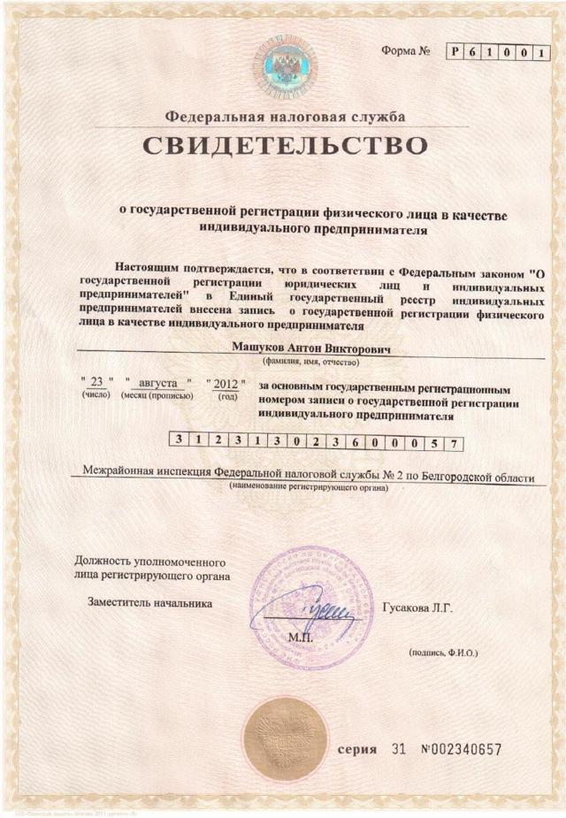 Свидетельство о государственной регистрации ИП - это что такое
