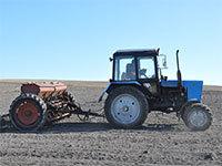 Фермерское хозяйство: преимущества и недостатки КФХ