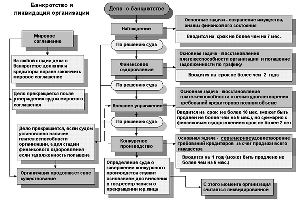 Процедура банкротства юридического лица: этапы, сроки