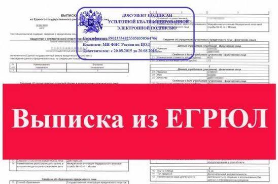 Выписка из ЕГРИП бесплатно на сайте налоговой по ИНН