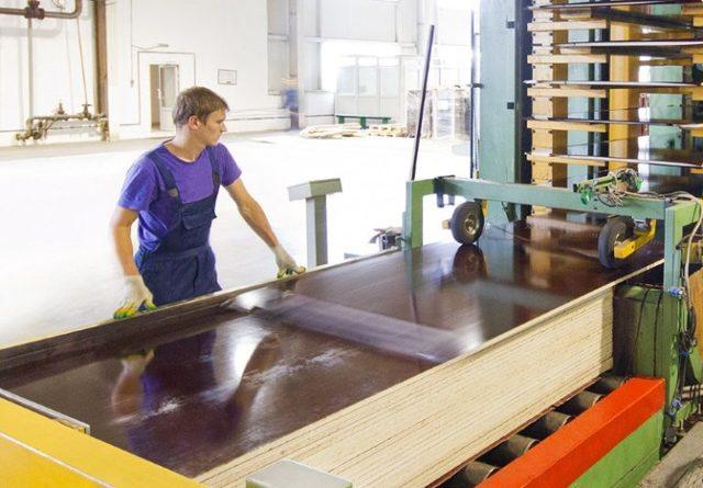 Технология производства фанеры, рентабельность